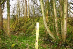 Offa's dyke near Craignant April 2016 – without dense undergrowth