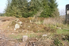 The Bronze Age cairn in October 2007, soon after the surrounding trees were felled